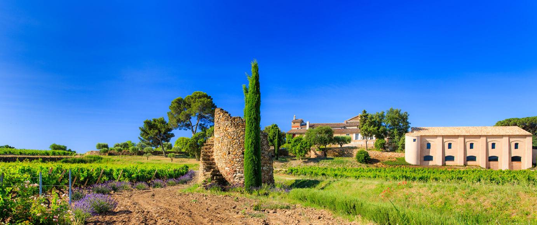 La Tour de l'Evêque. Un vignoble en Provence